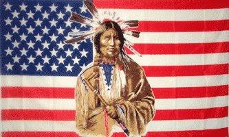 AMERICAN INDIAN FLAG america banner