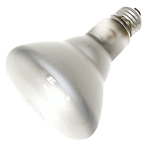 65 Watt Reflector Incandescent Sylvania