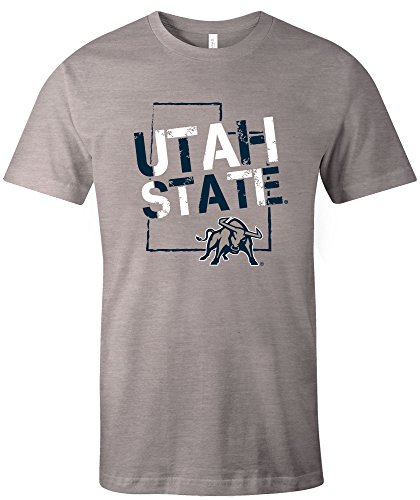 (NCAA Utah State Aggies Adult NCAA Stenciled Short sleeve Triblend T-Shirt,XL,AthleticGrey)