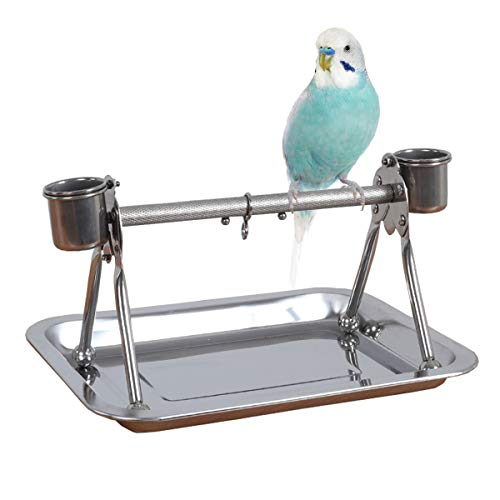 Bird Tabletop Perch Stand Stainless Steel Play Gym Playstand with Cups and Tray for Budgie Parakeet Cockatiel Conure