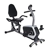 Sunny Health & Fitness Magnetic Recumbent Bike Exercise Bike, 300lb Capacity, Easy Adjustable Seat, Monitor, Pulse Rate Monitoring - SF-RB4616 by Sunny Distributor Inc.