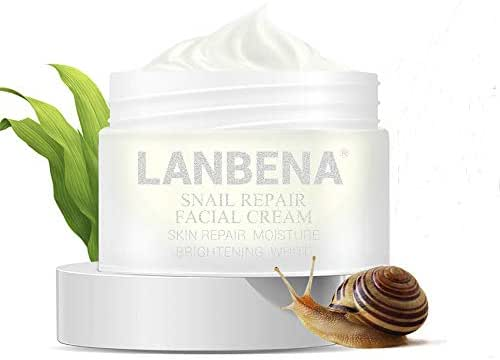 LANBENA Snail Facial Acne Repair Whitening Cream Day Cream for Repairs Acne Scars+Tightens Pores+Anti Wrinkle Anti Aging Moisturizing Firming