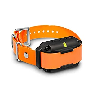 Dogtra 2300NCP Additional Receiver Professional Grade High-Output 3/4-Mile 2-Dog Expandable Remote Training E-Collar Click on image for further info.