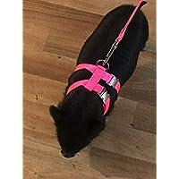 Carter Pet Supply PIG HOG Harness 2 Buckles