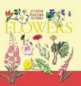 Wildflowers (Junior Nature Guides)
