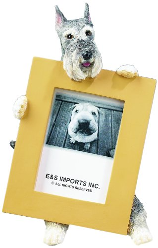 Schnauzer Picture Frame Holds Your Favorite 2.5 by 3.5 Inch Photo, Hand Painted Realistic Looking Schnauzer Stands 6 Inches Tall Holding Beautifully Crafted Frame, Unique and Special Schnauzer Gifts for - Schnauzer Photo