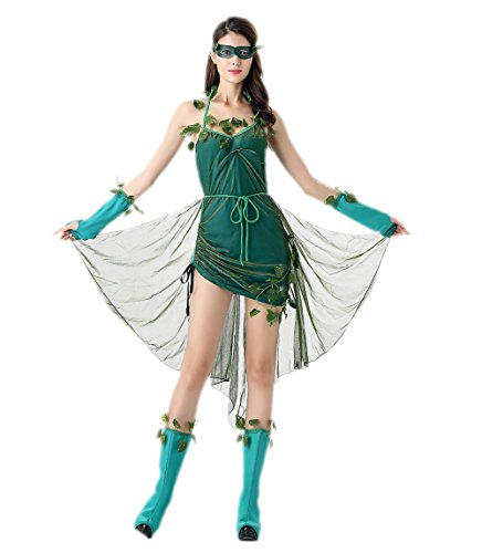 Lethal Beauty Costumes For Adults (Fancy Princess Costume - Halloween Adult Fancy Fairy Costume Dress)