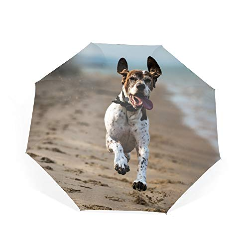 Travel Umbrella, 8 Ribs Finest Windproof German Shorthaired Pointer Umbrella Auto Open Close ()