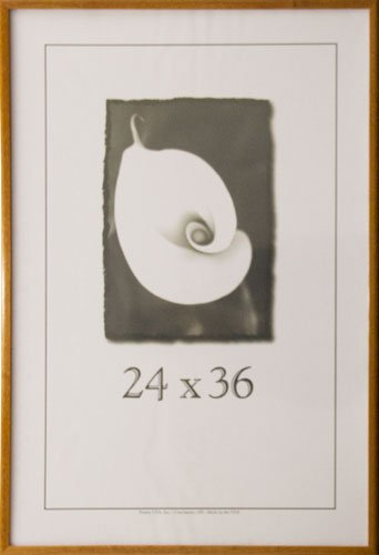 """Economy Frames, 24 x 36"""", Honey 2569"""