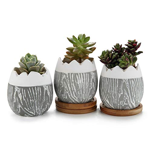 - T4U Cute Ceramic Succulent Pots Set of 3, Egg Shaped Succulent Planter Mini Plant Container with Bamboo Tray for Cactus Flower Home Garden Office Desk Decoration Birthday Wedding Christmas Gift