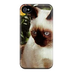 Hot Tpu Cover Case For Iphone/ 4/4s Case Cover Skin - A Kitten With Black Eyed Susan Flowers