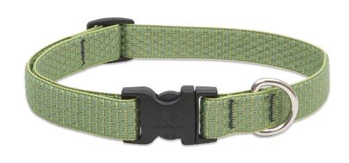 Eco Dog Collar - LupinePet Eco 3/4