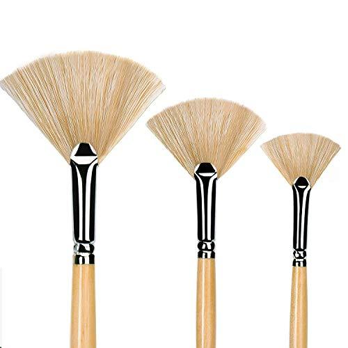 Best Fan Paintbrushes