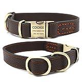 best Leather Dog Collar
