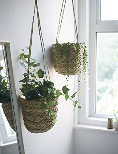 Natural Seagrass Hanging Planter – Handmade Indoor Flower Pot Holder – for Succulents Air Plants and Small Cacti