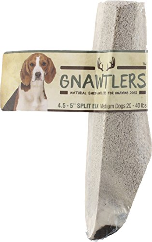 Gnawtlers - Premium Split Elk Antlers For Dogs, Naturally Shed Elk Antler Split, Natural Split Elk Antler Chews, Specially Selected From Rocky Mountain & Heartland Regions - 4.5-5'' Elk Antler Medium by Pet Parents