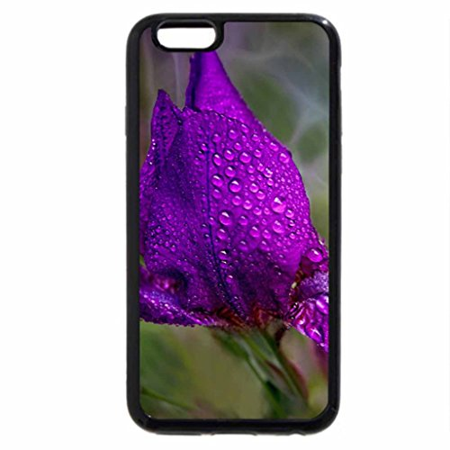 iPhone 6S / iPhone 6 Case (Black) Drops on the Purple Flower
