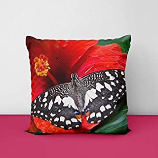 41XKKClqsaL. SS320 Butterfly Square Design Printed Cushion Cover