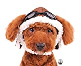 Charmed Aviator Pilot Hat with Goggles for Dogs in Sizes XS thru XL (X-Large, Brown)