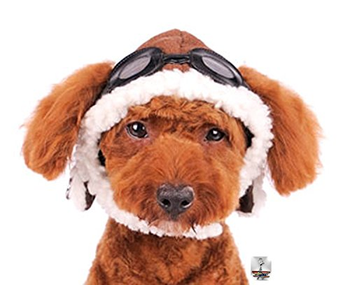 Charmed Aviator Pilot Hat with Goggles for Dogs in Sizes XS thru XL (Small, Brown)