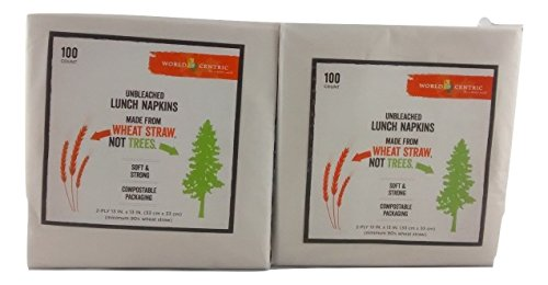 100% Recycled Dinner Napkin - World Centric Wheat Straw Lunch Napkins - 2 Ply - 100 Ct - Pack of 2