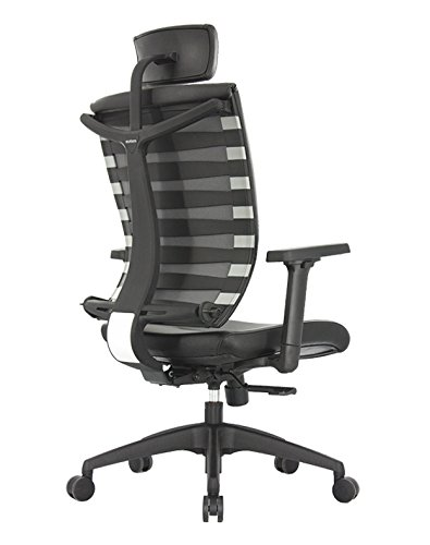 ApexDesk SK Series Ergonomic Leather High-Back Office Chair Adjustable Seat Height, Backrest and Armrest – Black by ApexDesk (Image #1)