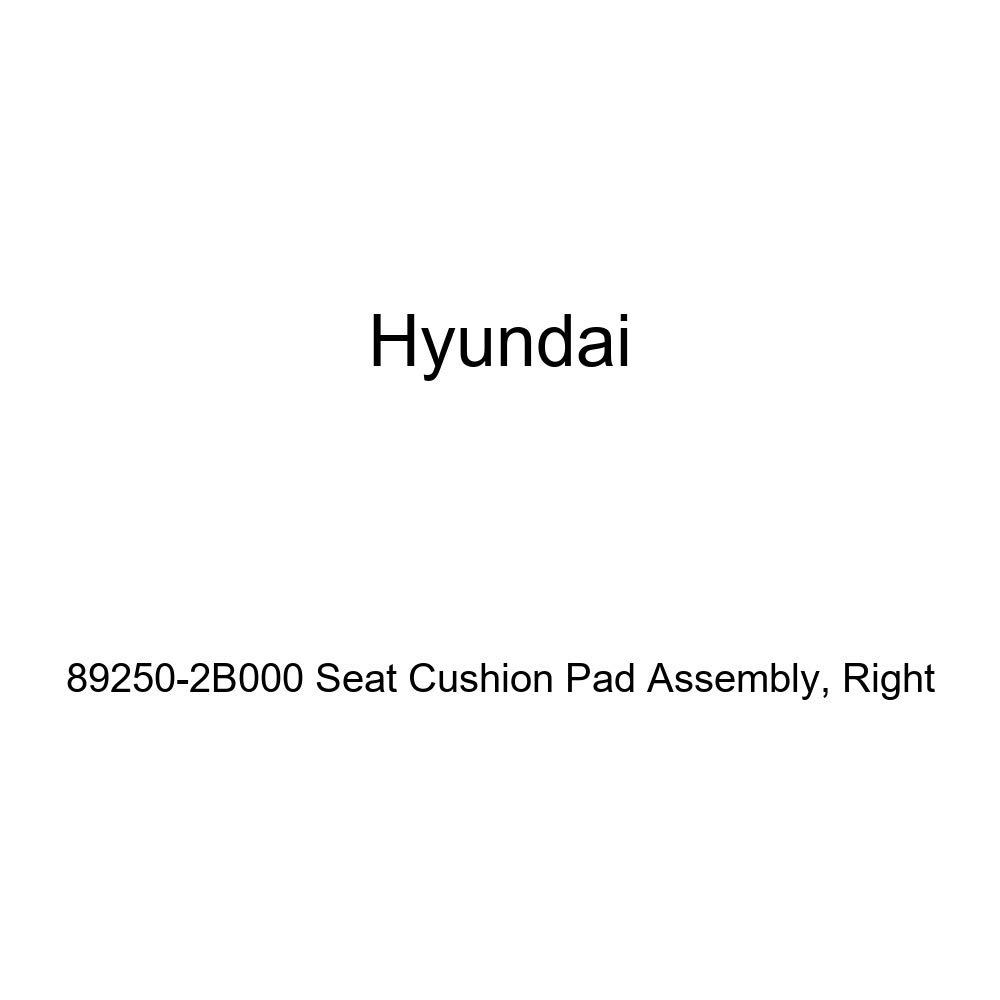 Right Genuine Hyundai 89250-2B000 Seat Cushion Pad Assembly