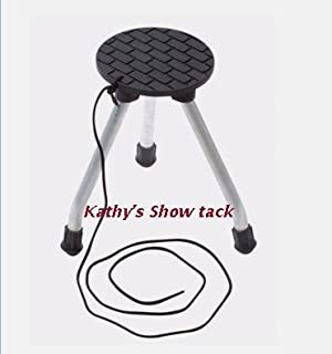 Easy Mount Horse Portable Mounting Aid  sc 1 st  Amazon.com & Amazon.com: Folding Rubbermaid Curver Plastic 2 Step Stool - Mini ... islam-shia.org