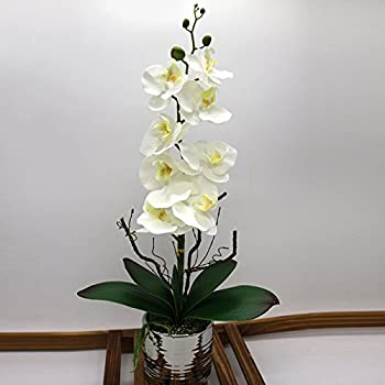 Amazon artificial flowers orchid arrangement centerpieces home artificial orchid flower arrangements table centerpiece with vase white mightylinksfo