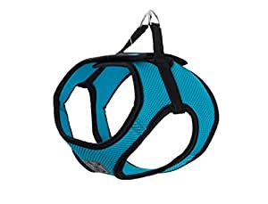 RC Pet Products Cirque Soft Walking Step In Dog Harness, Medium, Teal