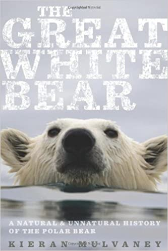 The Great White Bear  A Natural and Unnatural History of the Polar Bear 1st  Edition 59b1b980b959a
