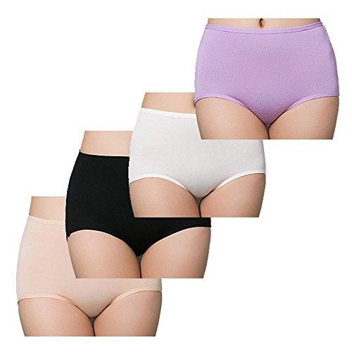 Great Divide Fabric (Women's 4 Pack Briefs Cool Bamboo Fiber Panties Classic high Waist Underwear Girl Lingerie Underpants (9/2XL, 4 Pack))