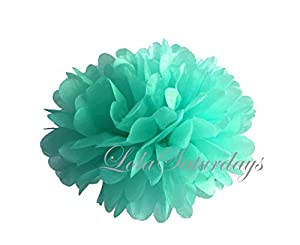 LolaSaturdays Paper Pom Poms 3 Sizes 6 Pack Mint by LolaSaturdays