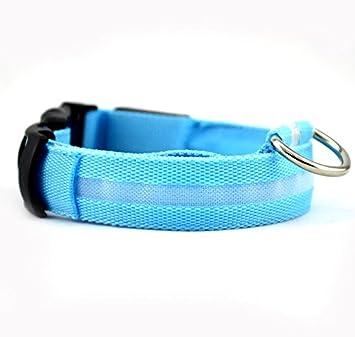 Gabeky Design Super Bright Nylon LED Dog Night Safety Collar Flashing Light up W circular Pendant Ring Green, L