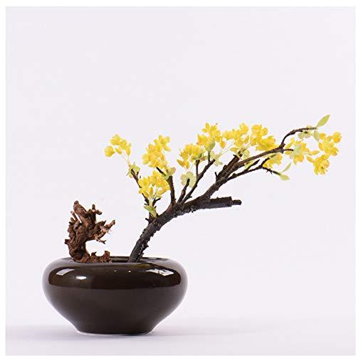 CITW Simple Art Yellow Fruit Tree Bonsai Bonsai Desktop Ornaments Modern Minimalist Home Furnishing OrnamentsOffice Gift by CITW (Image #5)