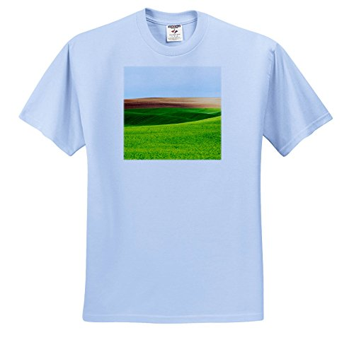 Palouse Hills - 3dRose Danita Delimont - Agriculture - Washington, Palouse, Green Hills Of Wheat and fallow Fields - T-Shirts - Adult Light-Blue-T-Shirt 3XL (TS_279752_55)