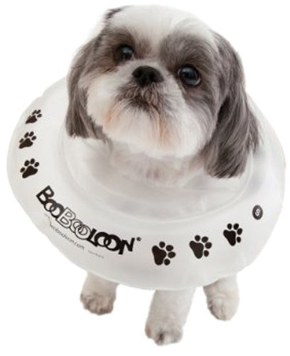 BooBooLoon Inflatable Pet Recovery Collar 1 Small Size