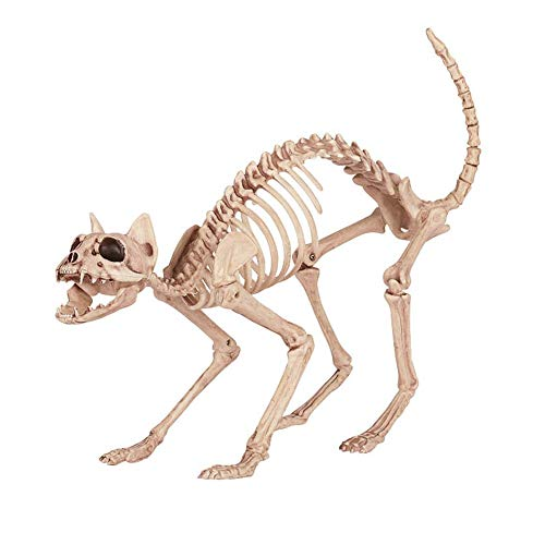LCMJ WS Vintage Halloween Decoration Scary Cat Skeleton Spoof Interesting -