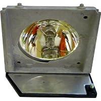 Lampedia Projector Lamp for ACER PD116P / PD116PD / PD521D / PD523 / PD523D / PD525 / PD525D / 310-5513 / EC.J1001.001 / 730-11445