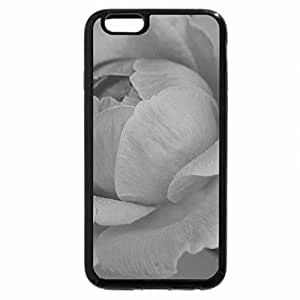 iPhone 6S Case, iPhone 6 Case (Black & White) - Pink rose