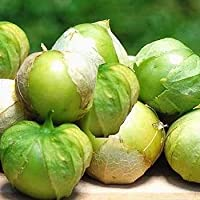 25 Semillas de Tomatillo Verde - Physalis ixocarpa