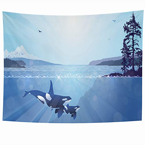 Ahawoso Tapestry Wall Hanging 60x50 Inches Cloud Blue Northwest Inspiring Rugged West Coast Sea Vancouver Abstract Nature Green Canada Pacific Home Decor Tapestries Art for Living Room Bedroom Dorm