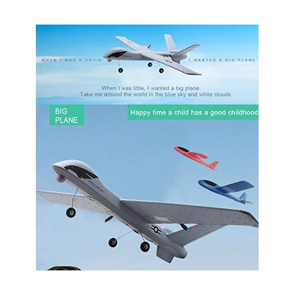 Studyset Flying Model Gliders RC Plane 2 4G 2CH Predator Z51