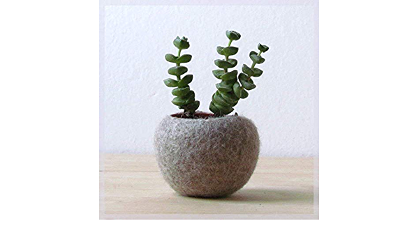 Flower Pot Cover Small Planter Blue Plant Pot Succulent Planter Housewarming Gift Decorative Container Fabric Home Decor Knitted Cozy