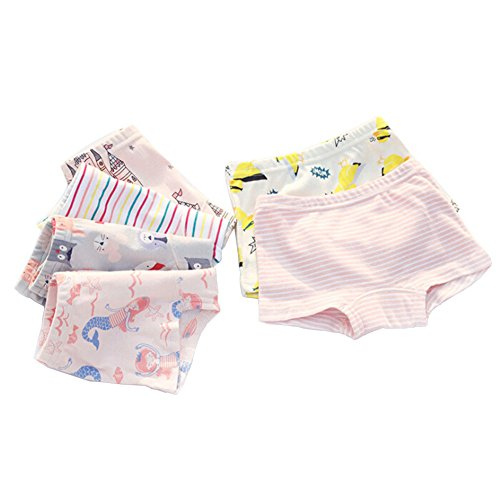 Closecret Kids Series Baby Underwear Little Girls' Cotton Boyshort Panties (Pack Of 6) (Style 1, 2-3 Years) (Size 2t Underwear)