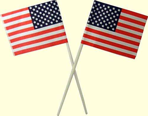 American Flag Plastic Cupcake Picks - 12 Count (American Flag Cupcake Picks)