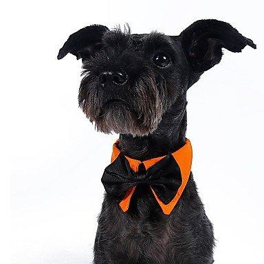 MJD Gatos / Perros Disfraces / Accesorios de Pelo / Corbata/Pajarita / Collares /