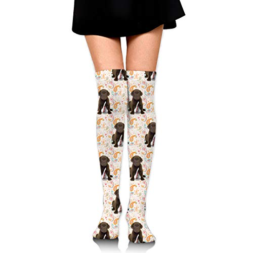 MFMAKER Women Girls Cheerleader Over The Knee Plus Size Long Cotton Stretchy Thigh Stockings Puppy Chocolate Lab Kisses High Tube Socks ()