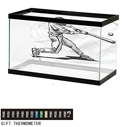 bybyhome Fish Tank Backdrop Boys Room,Fast Pitch Baseball,Aquarium Background,48
