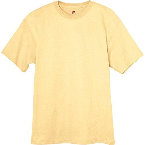 T Daffodil Tagless shirt Hanes Men`s YOq8Bf